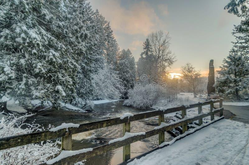 Alberi di Snowy ed insenatura e recinto immagine stock