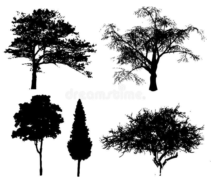 Alberi di vettore illustrazione vettoriale