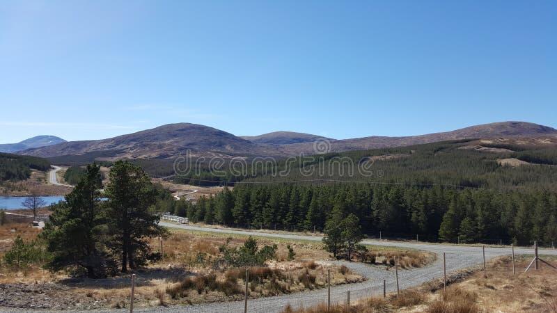 Alberi e colline immagini stock libere da diritti