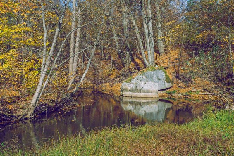 Alberi e fiume, autunno e giorno soleggiato Foto 2018 della natura di viaggio fotografie stock