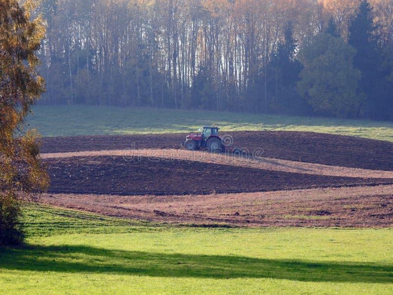 Alberi e funzionamento del trattore nel campo, Lituania fotografie stock libere da diritti
