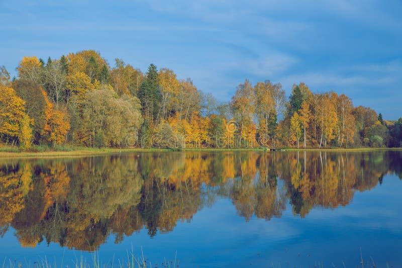 Alberi e lago, autunno e giorno soleggiato Foto 2018 della natura di viaggio fotografia stock