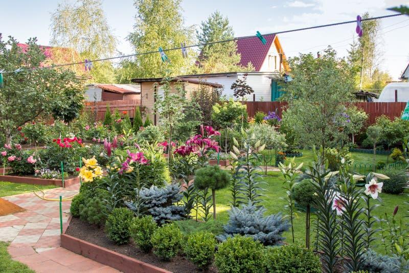 Alberi e prato inglese dei cespugli dei fiori in giardino for Cespugli giardino