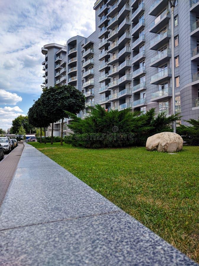 Alberi e prato inglese verde vicino al fondo urbano del cielo blu e della costruzione fotografia stock
