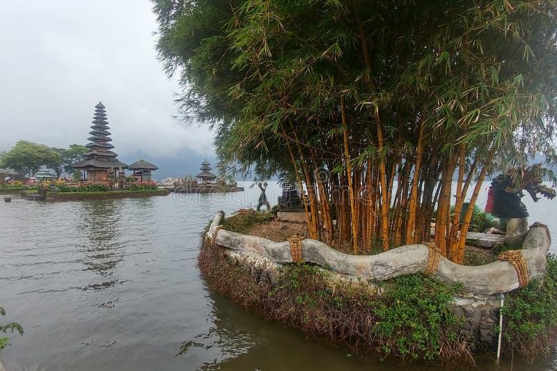 Alberi e tempio di bambù di Ulun Danu sul lago Beratan del fondo in Bali Indonesia immagini stock libere da diritti