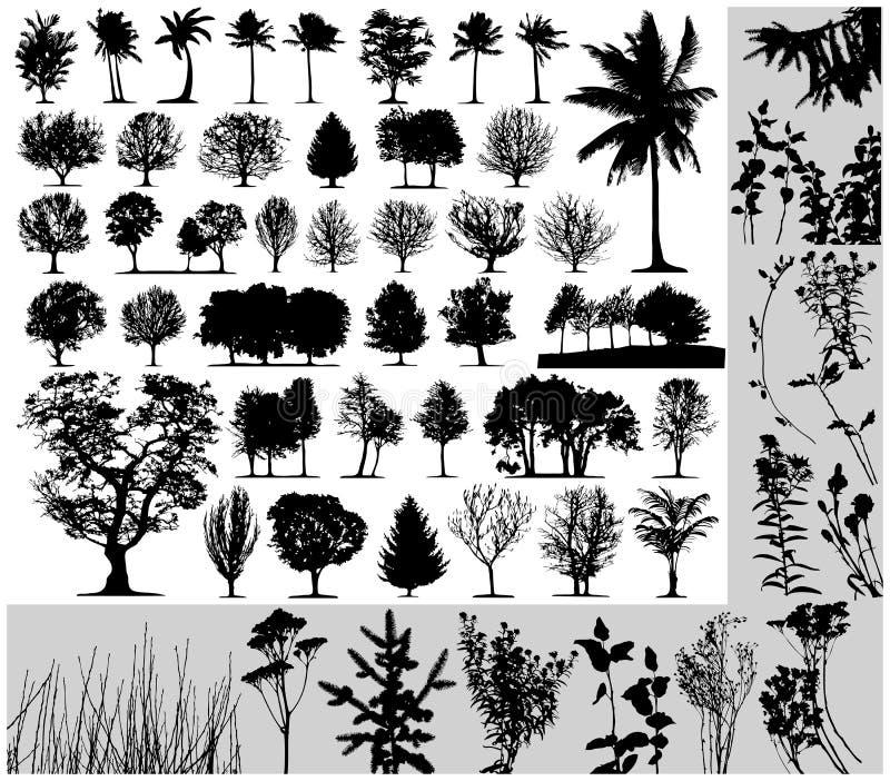 Alberi, erba, vettore della pianta illustrazione di stock