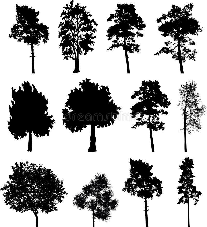 Alberi isolati grande insieme - 2 illustrazione vettoriale