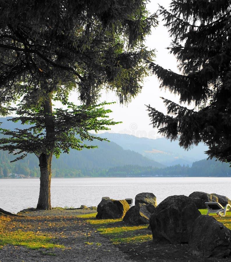 Alberi, lago, montagne nebbiose e luce dorata immagini stock libere da diritti