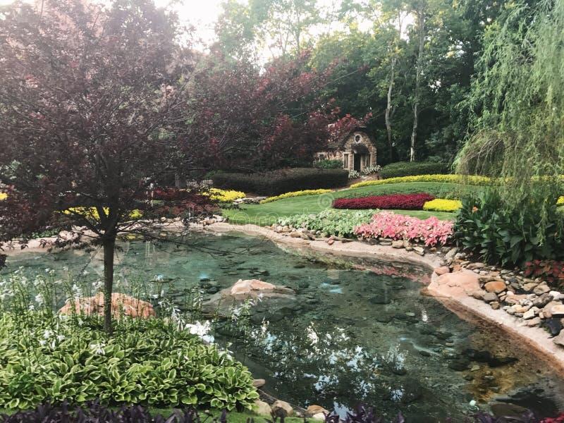 Alberi naturali del lago garden immagini stock