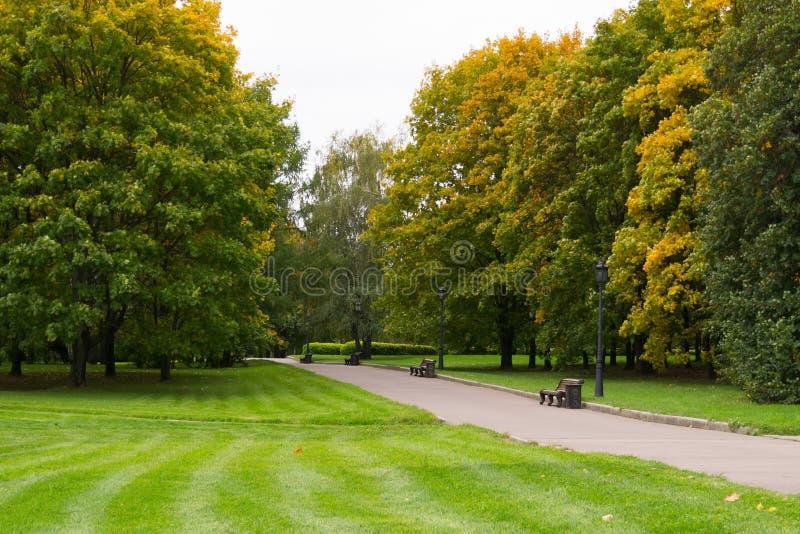 Alberi nel parco della città di autunno fotografia stock libera da diritti