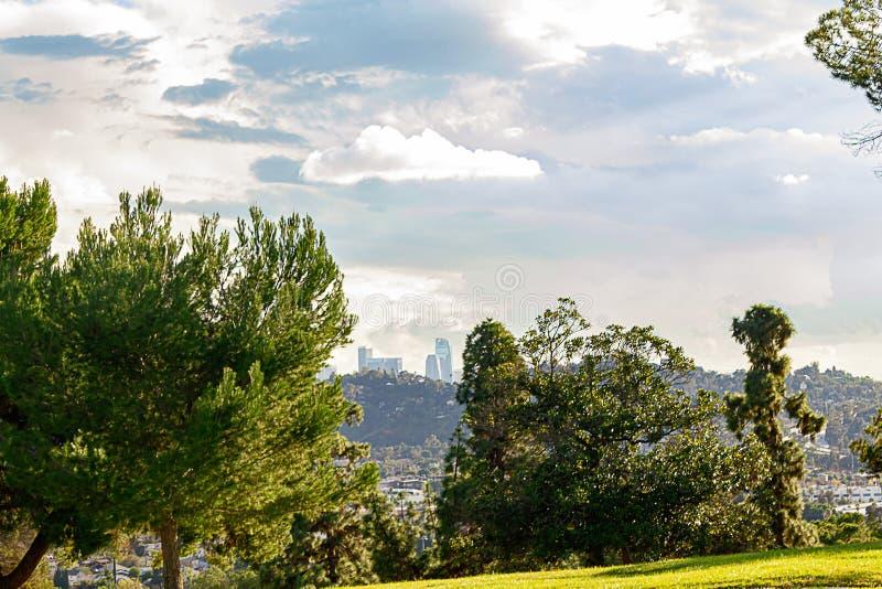 Alberi sempreverdi con la vista panaramic delle costruzioni e case del pendio di collina con le torri della LA nella distanza fotografie stock libere da diritti