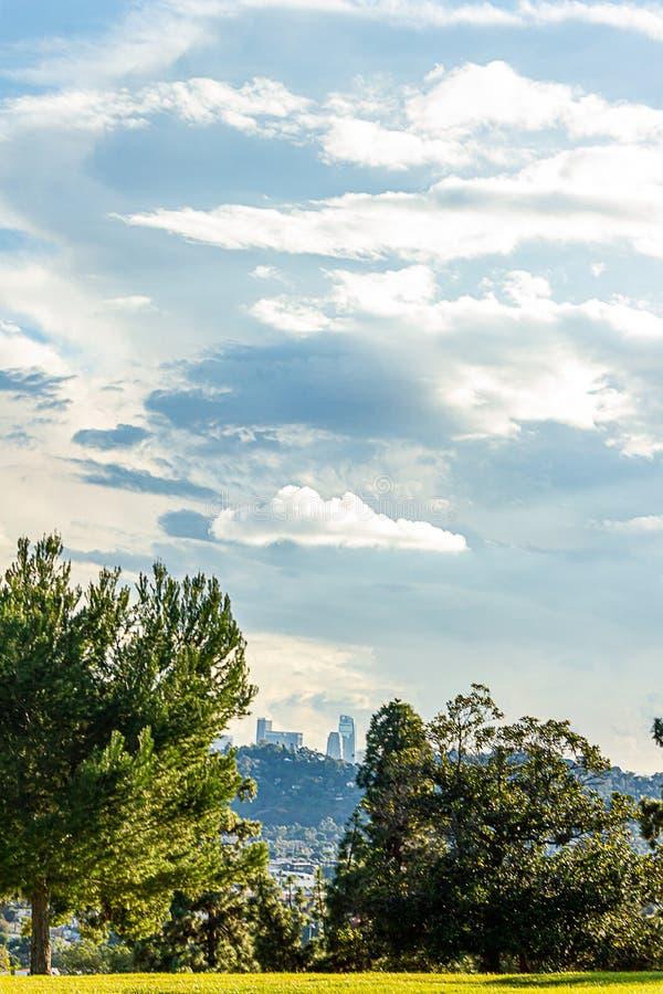 Alberi sempreverdi con la vista panaramic delle costruzioni e case del pendio di collina con le torri della LA nella distanza fotografia stock