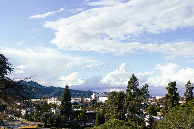 Alberi sempreverdi e dissiduous con le montagne e il cloudscape dello scape della città fotografia stock libera da diritti