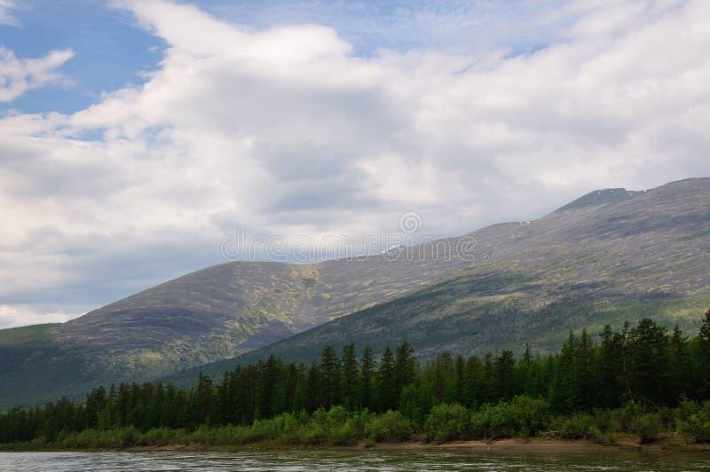 Alberi sulla riva, le montagne fotografia stock