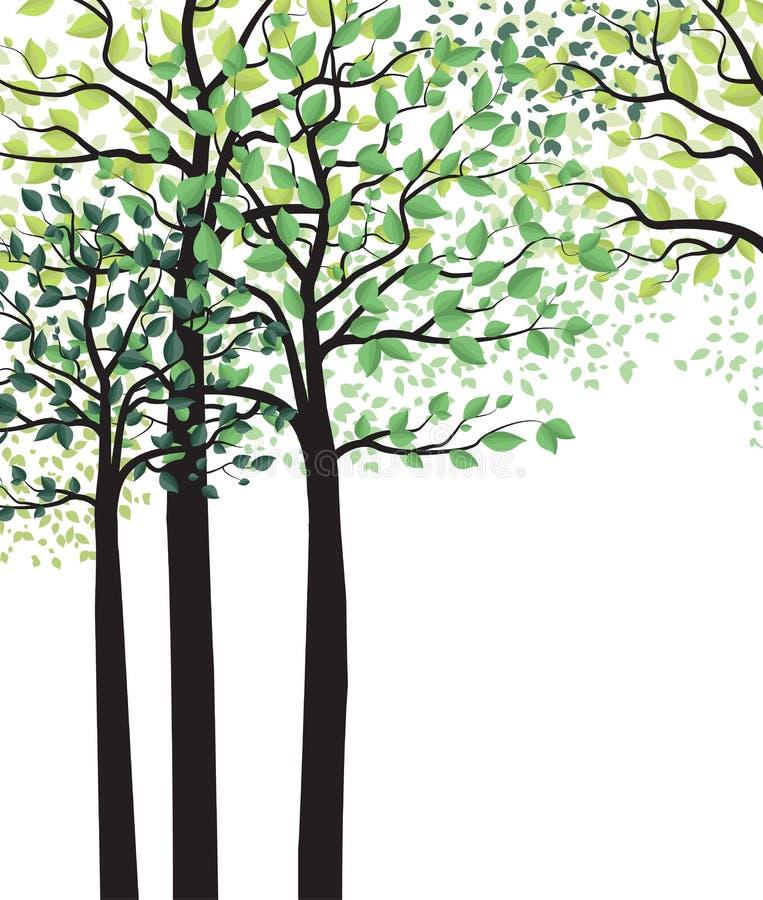 Alberi verdi con le foglie royalty illustrazione gratis