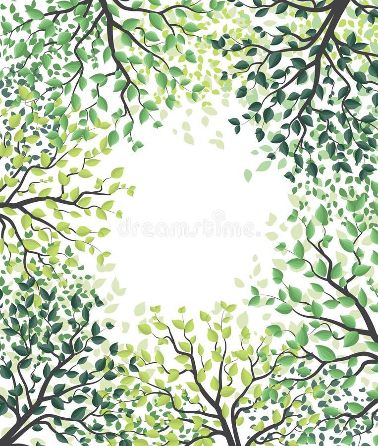 Alberi verdi con le foglie illustrazione di stock