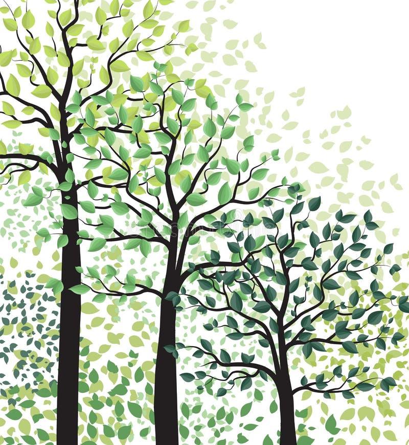 Alberi verdi con le foglie illustrazione vettoriale