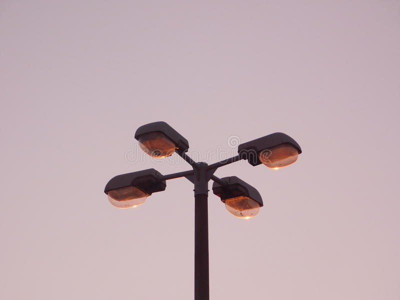 Alberino della lampada immagini stock