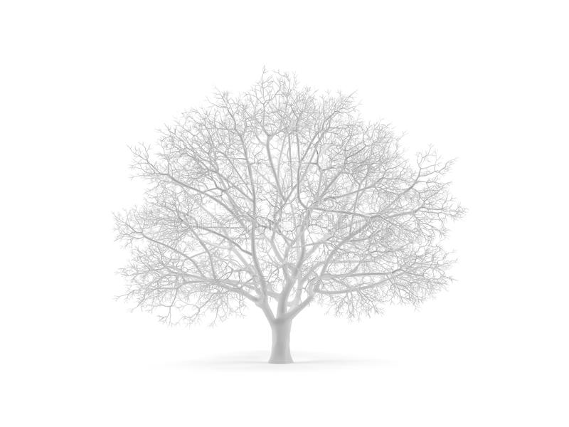 Albero. royalty illustrazione gratis