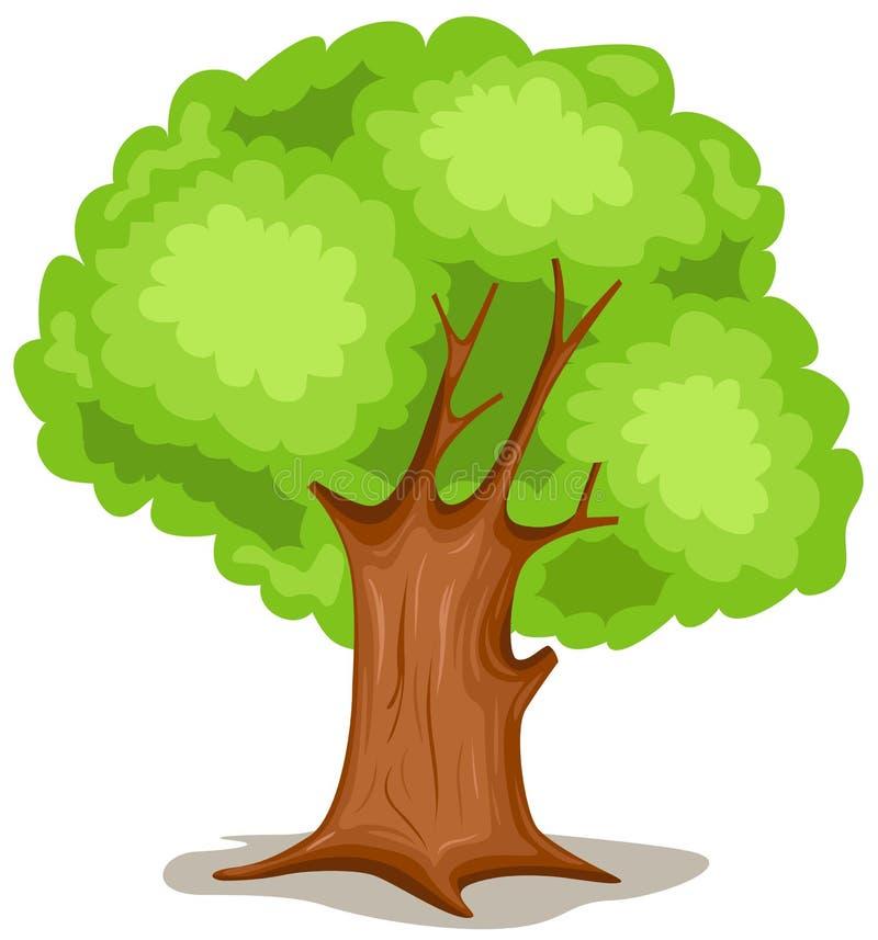 albero illustrazione di stock