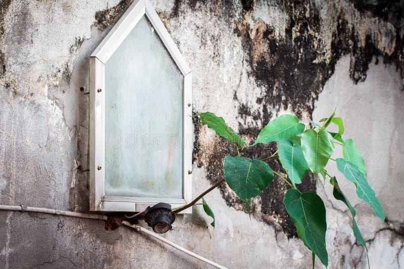 albero al mattone concreto fotografia stock