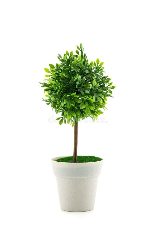 albero artificiale in un vaso isolato nel fondo bianco immagine stock libera da diritti