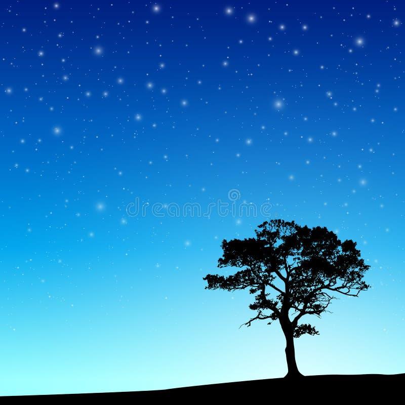 Albero con cielo notturno illustrazione vettoriale