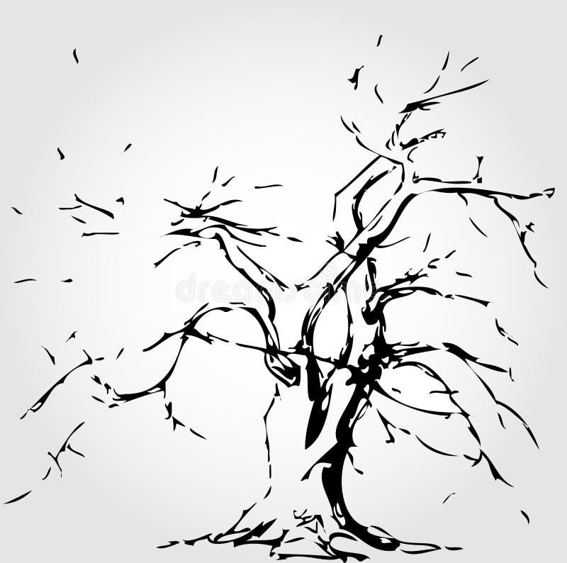 Albero con i fogli caduti illustrazione di stock