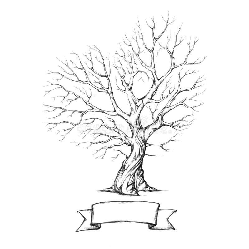 Albero con la corona in forma di cuore illustrazione di stock