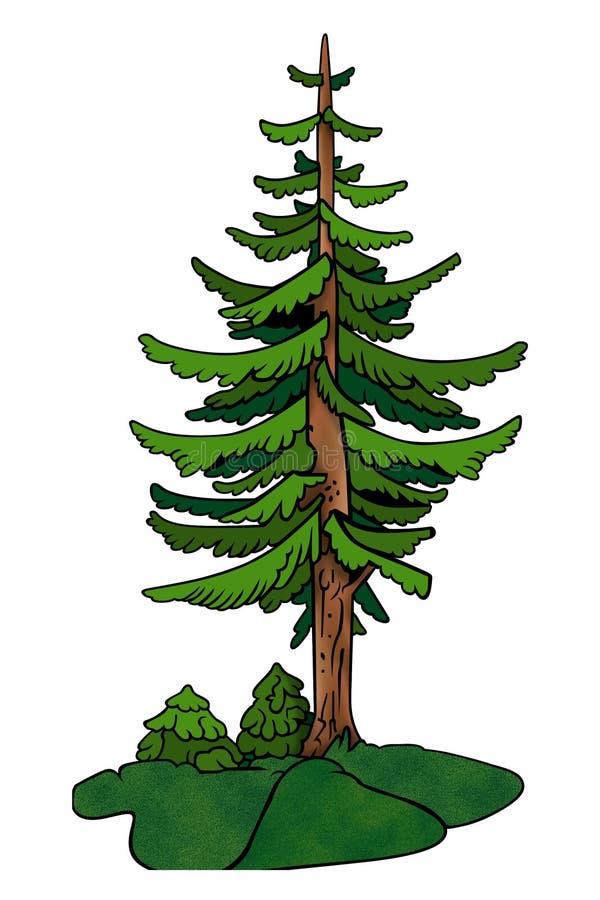 Albero - conifero royalty illustrazione gratis