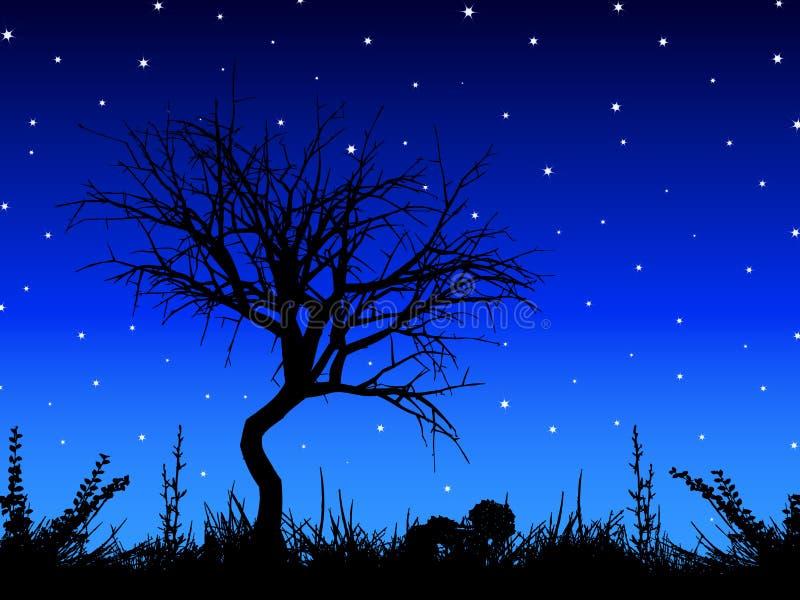 Albero contro il cielo stellato royalty illustrazione gratis