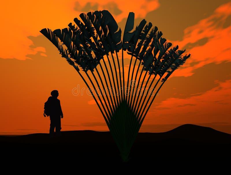 Albero dei viaggiatori. Madagascariensis di Ravenala. 3D. fotografie stock