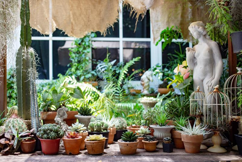 Albero del cactus e scultura della tavola e del cemento del giardino fotografia stock libera da diritti