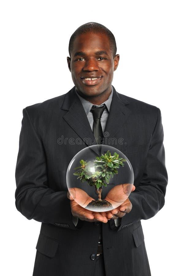 Albero della holding dell'uomo d'affari all'interno della sfera di cristallo immagine stock
