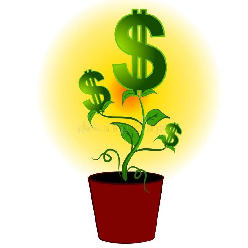 Albero della pianta di soldi dei segni del dollaro illustrazione vettoriale