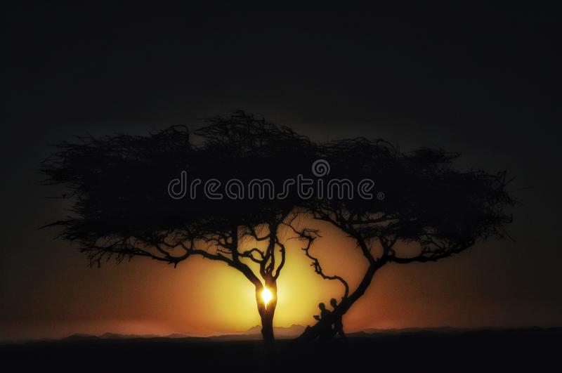 Albero in deserto alla siluetta di tramonto dell'albero in dune in Africa con le montagne fotografia stock