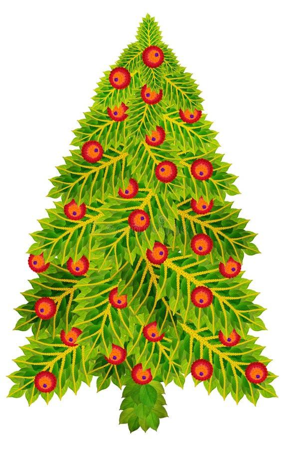 Albero di abete dell'agrifoglio di Natale immagini stock libere da diritti