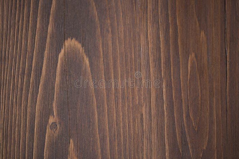 albero di cedro macchiato fotografia stock