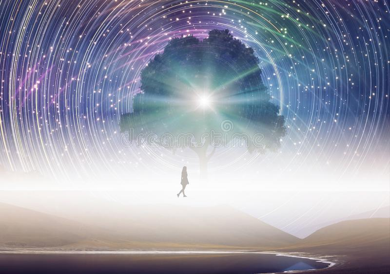 Albero di conoscenza, siluetta della ragazza, universo, cielo di filatura delle stelle illustrazione vettoriale
