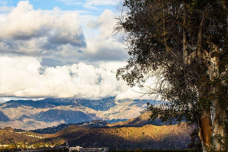 Albero di eucalyptus sulle case, sulle strade e sulle montagne di trascuratezza del pendio di collina con le nuvole fotografia stock