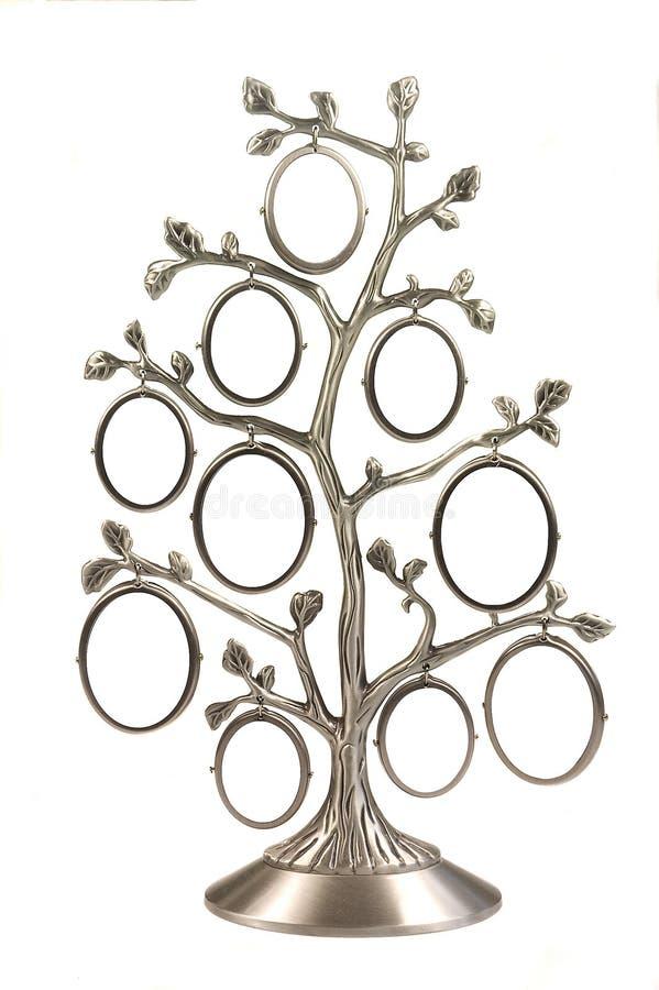 Albero di famiglia genealogico d'argento fotografia stock libera da diritti