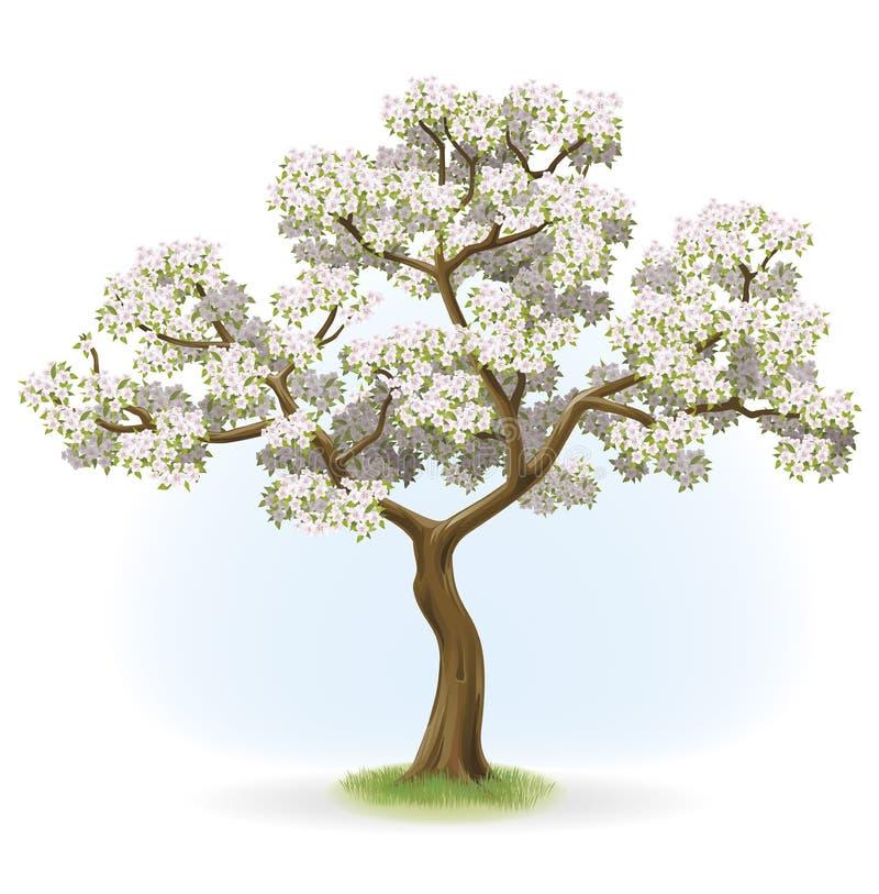 Albero di fioritura illustrazione vettoriale