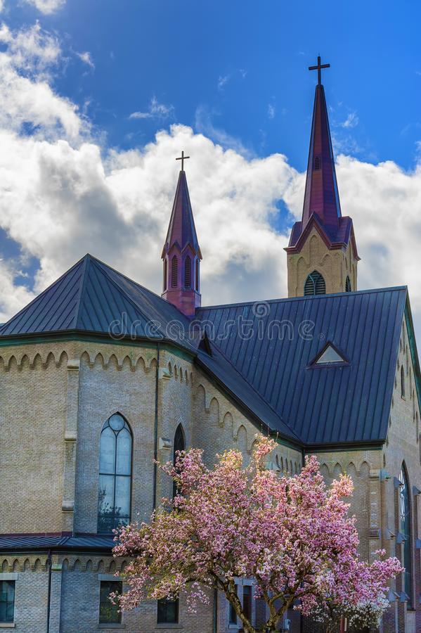 Albero di fioritura davanti alla chiesa fotografie stock libere da diritti