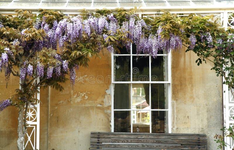 Albero di fioritura sulla facciata della casa di campagna for Architettura della casa di campagna