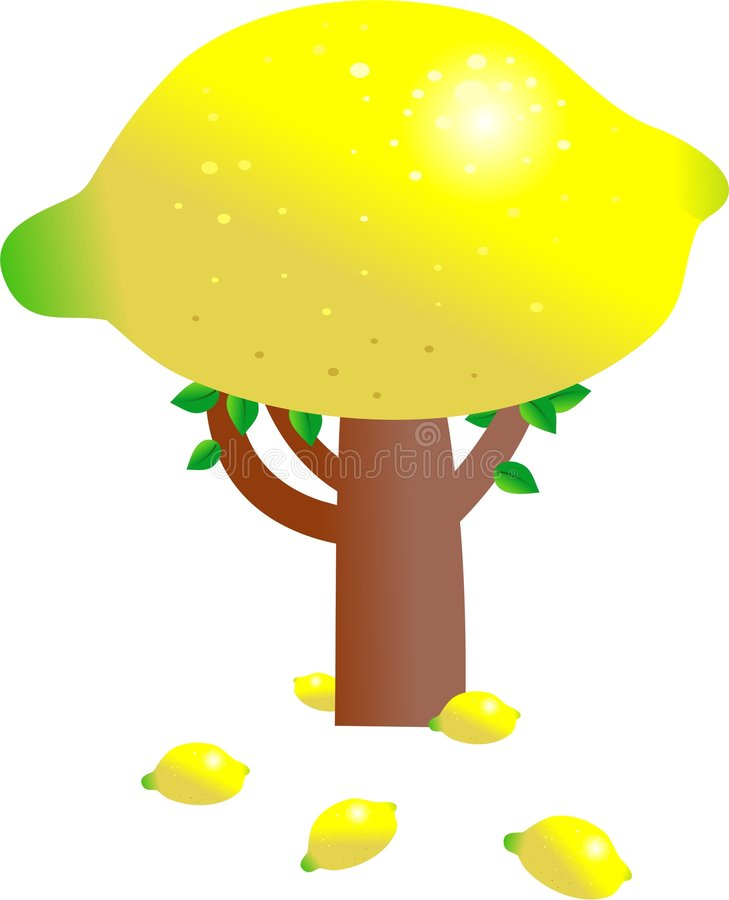 Albero di limone illustrazione di stock