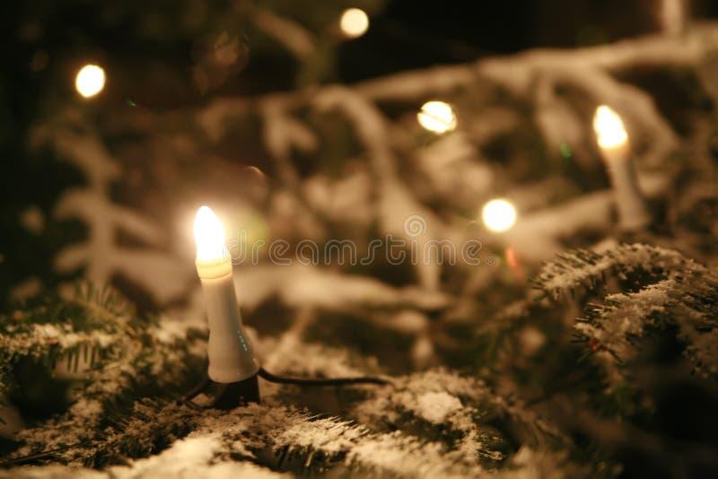Download Albero di Natale fotografia stock. Immagine di decorativo - 7324464