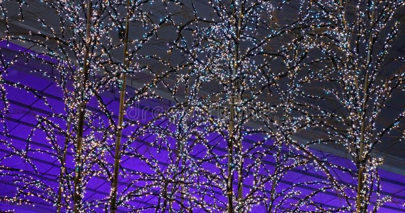 Albero di Natale acceso alla notte fotografia stock