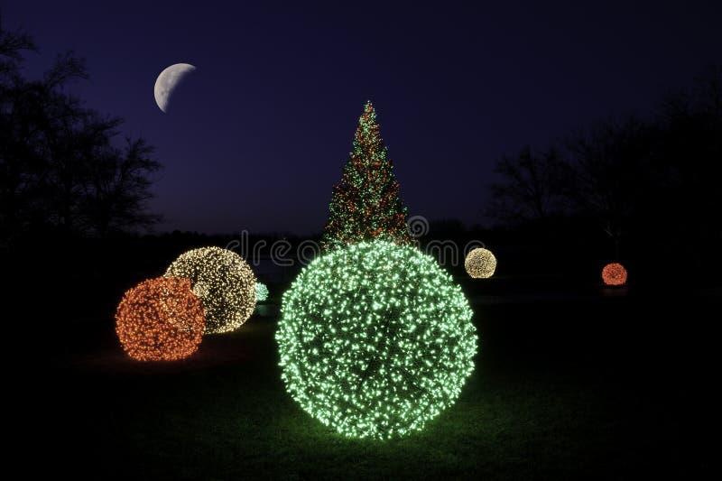 Albero di Natale alla notte con la luna immagine stock libera da diritti
