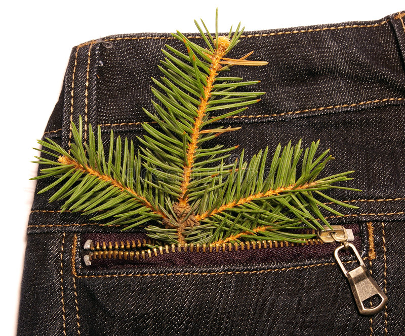 Download Albero Di Natale In Casella Dei Jeans Fotografia Stock - Immagine di anno, cotone: 7315612