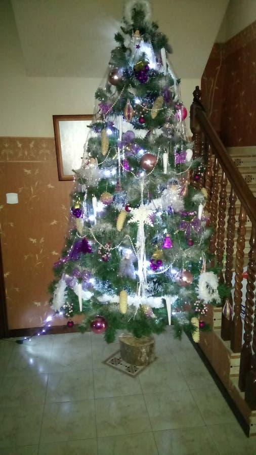 Albero di Natale con gli indicatori luminosi fotografie stock